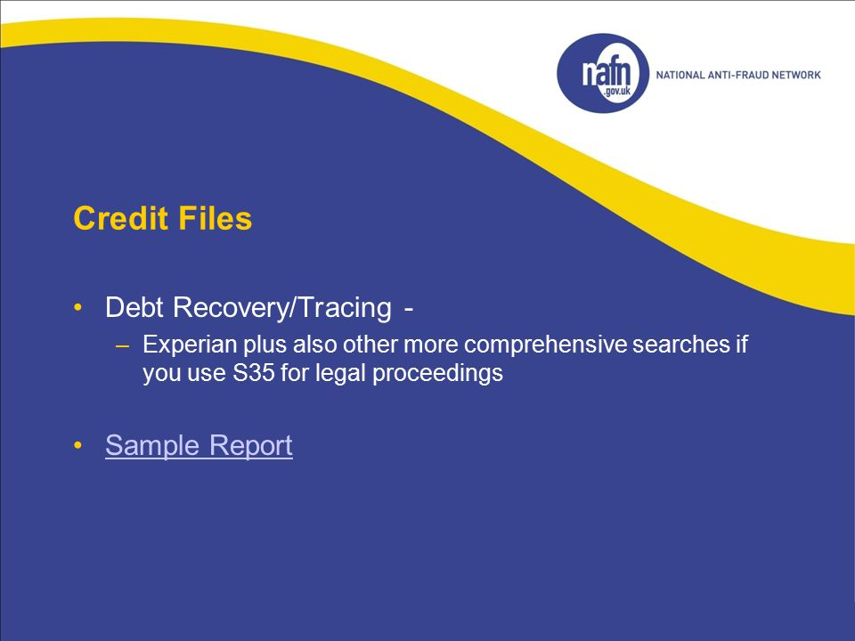 Credit Files Debt Recovery/Tracing - Sample Report