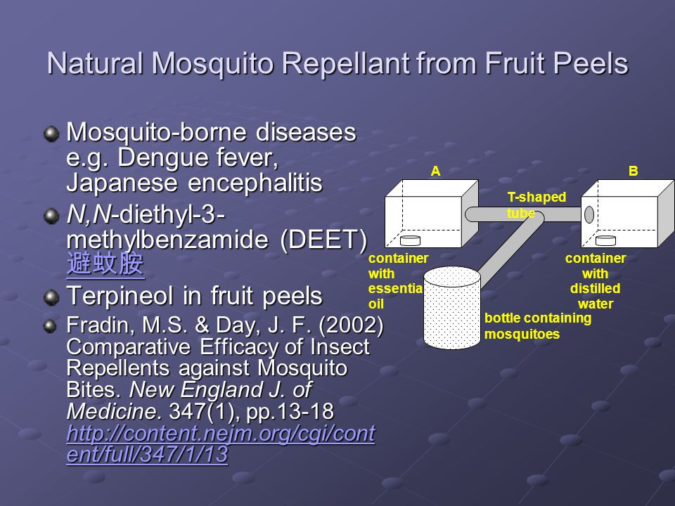 Natural Mosquito Repellant from Fruit Peels