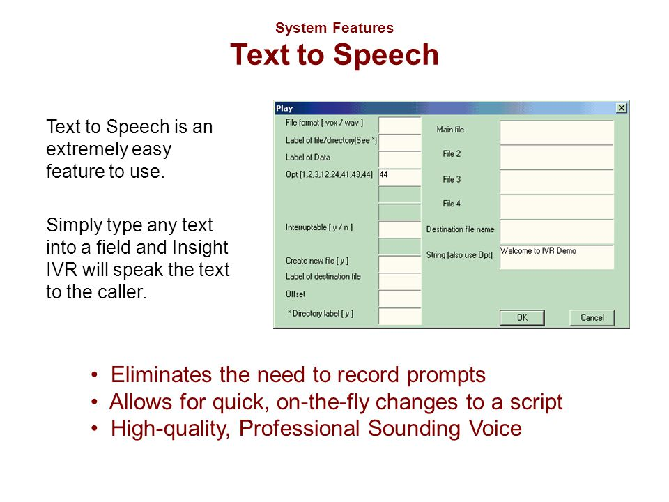 System Features Text to Speech