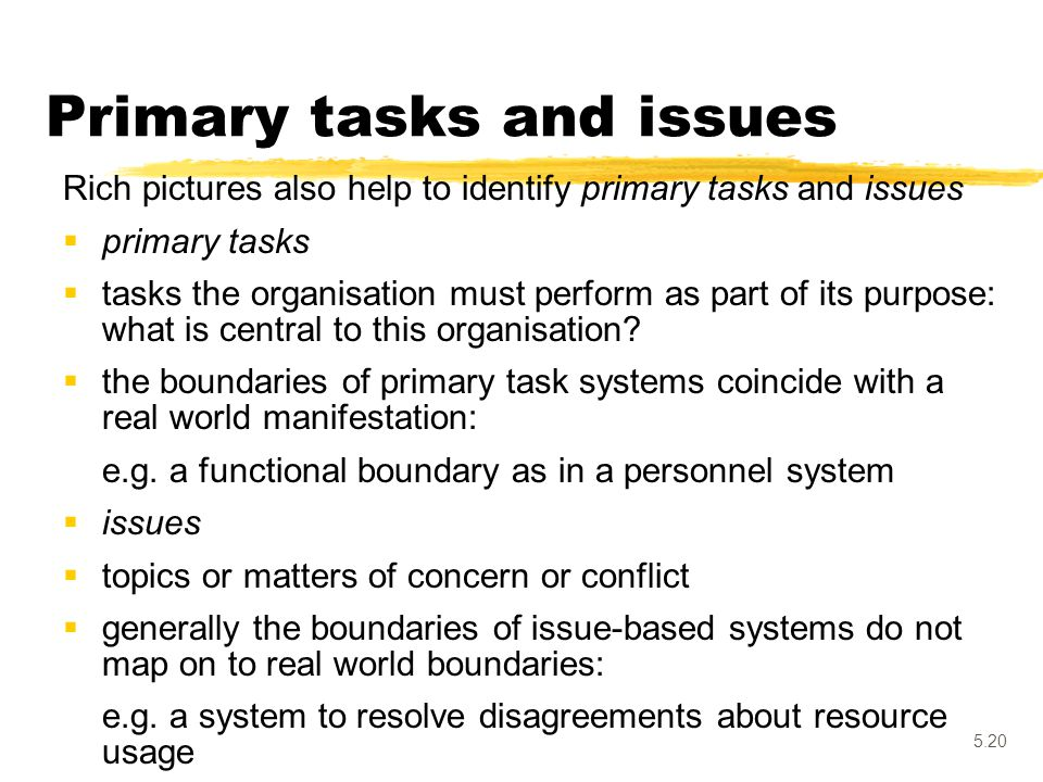 Primary tasks and issues