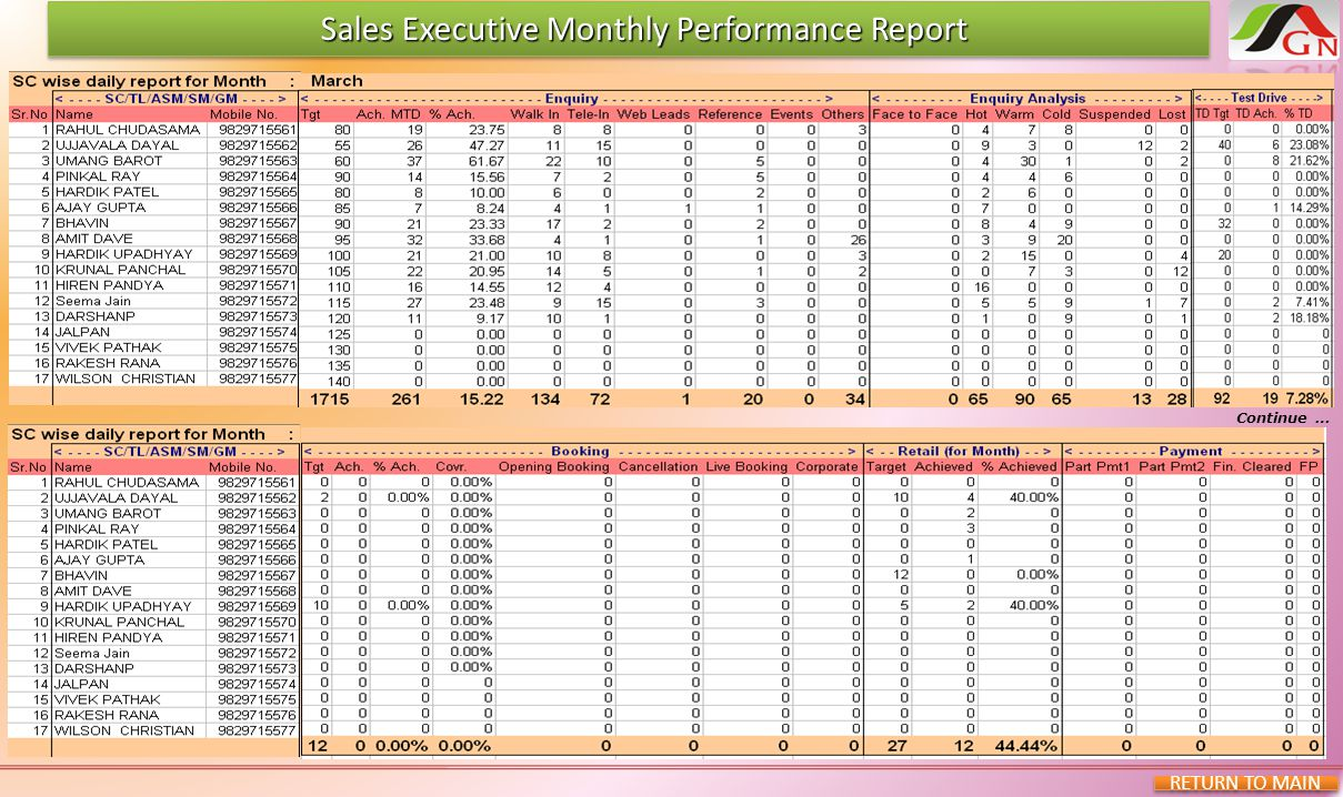 Sales Executive Monthly Performance Report