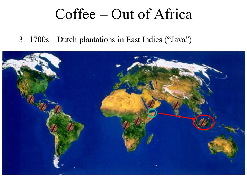 Coffee – Out of Africa 3. 1700s – Dutch plantations in East Indies ( Java )