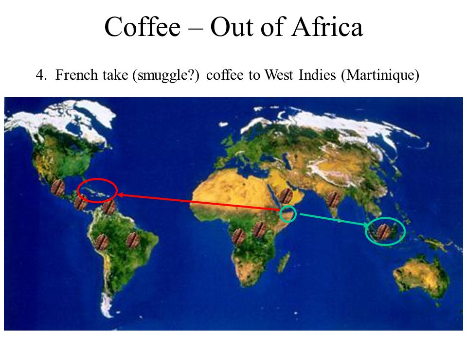 Coffee – Out of Africa 4. French take (smuggle ) coffee to West Indies (Martinique)