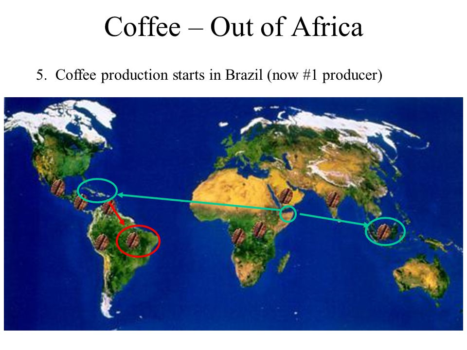 Coffee – Out of Africa 5. Coffee production starts in Brazil (now #1 producer)