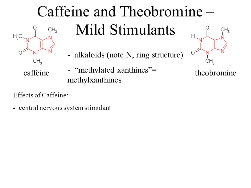 Caffeine and Theobromine – Mild Stimulants