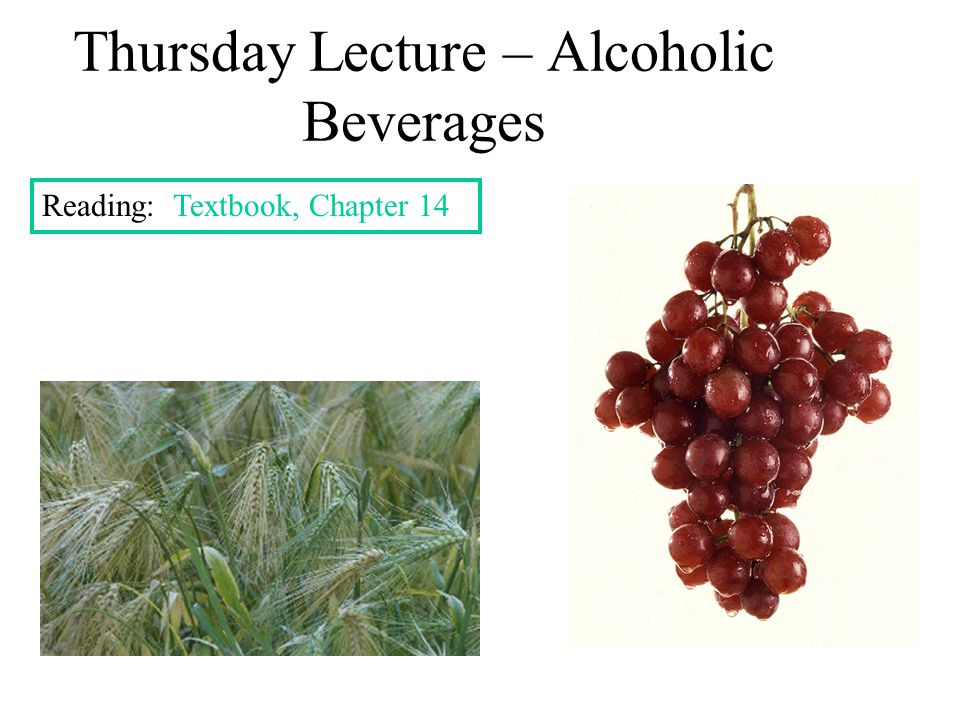 Thursday Lecture – Alcoholic Beverages