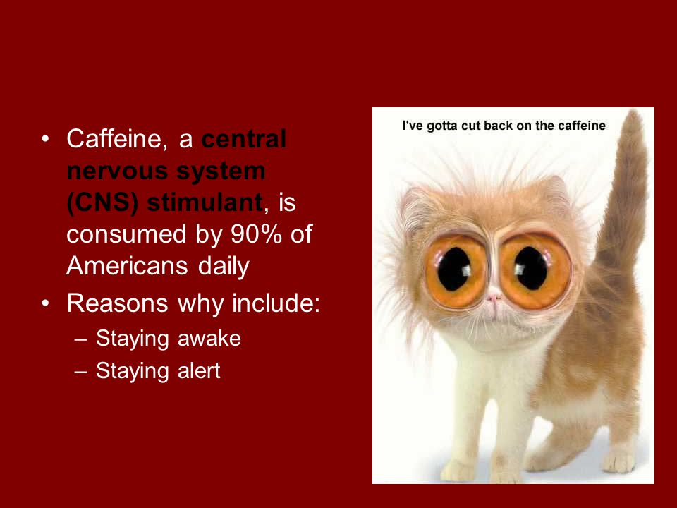 Caffeine, a central nervous system (CNS) stimulant, is consumed by 90% of Americans daily
