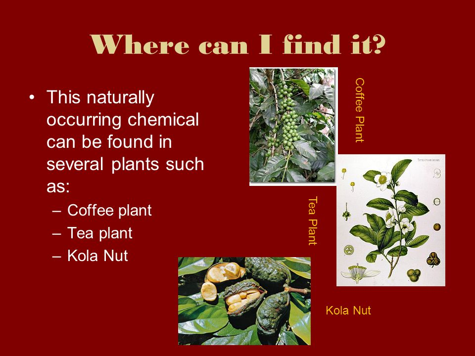 Where can I find it Coffee Plant. This naturally occurring chemical can be found in several plants such as: