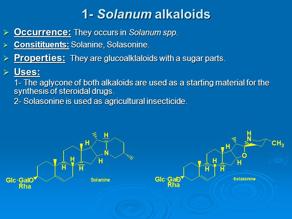 1- Solanum alkaloids Occurrence: They occurs in Solanum spp.