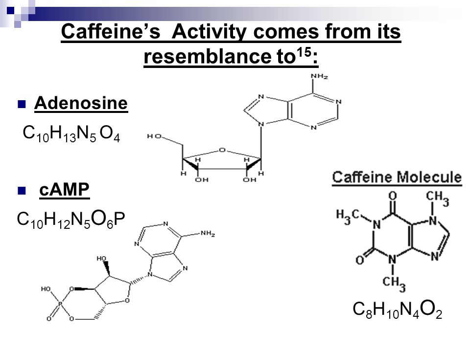 Caffeine's Activity comes from its resemblance to15: