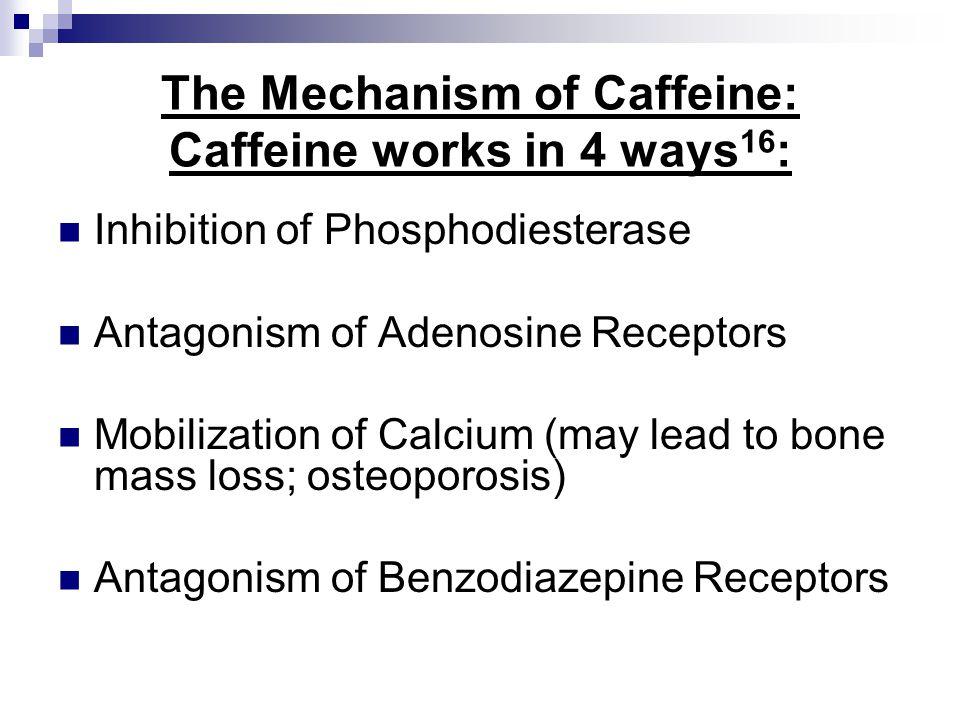 The Mechanism of Caffeine: Caffeine works in 4 ways16: