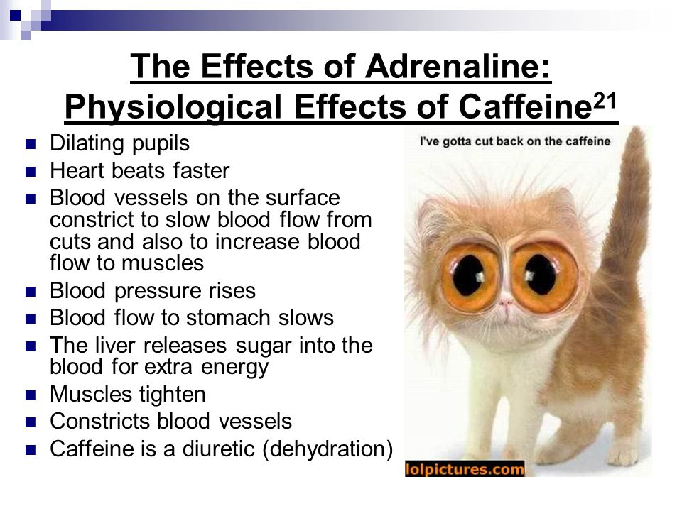 The Effects of Adrenaline: Physiological Effects of Caffeine21