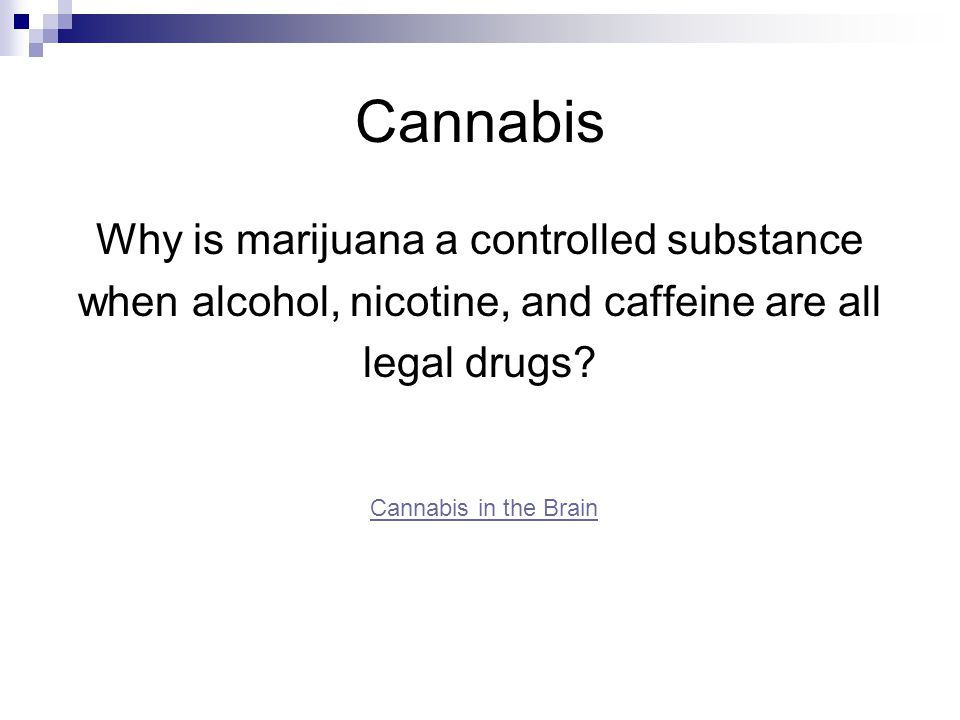 Cannabis Why is marijuana a controlled substance
