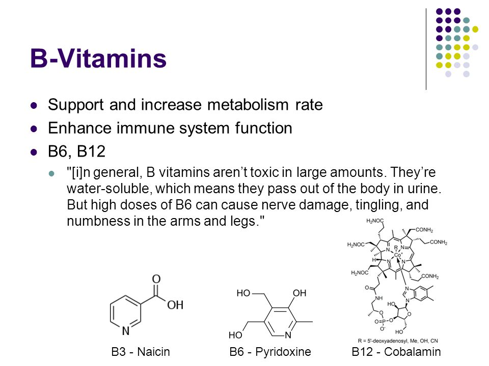 B-Vitamins Support and increase metabolism rate