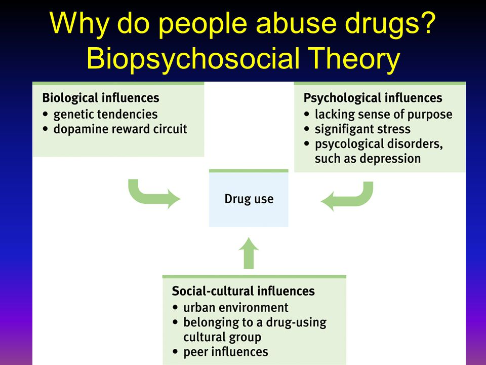 Why do people abuse drugs Biopsychosocial Theory