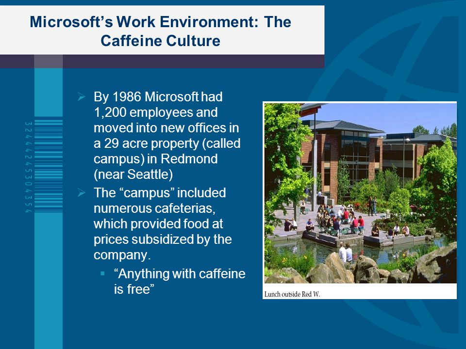 Microsoft's Work Environment: The Caffeine Culture