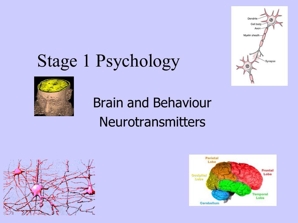 Brain and Behaviour Neurotransmitters