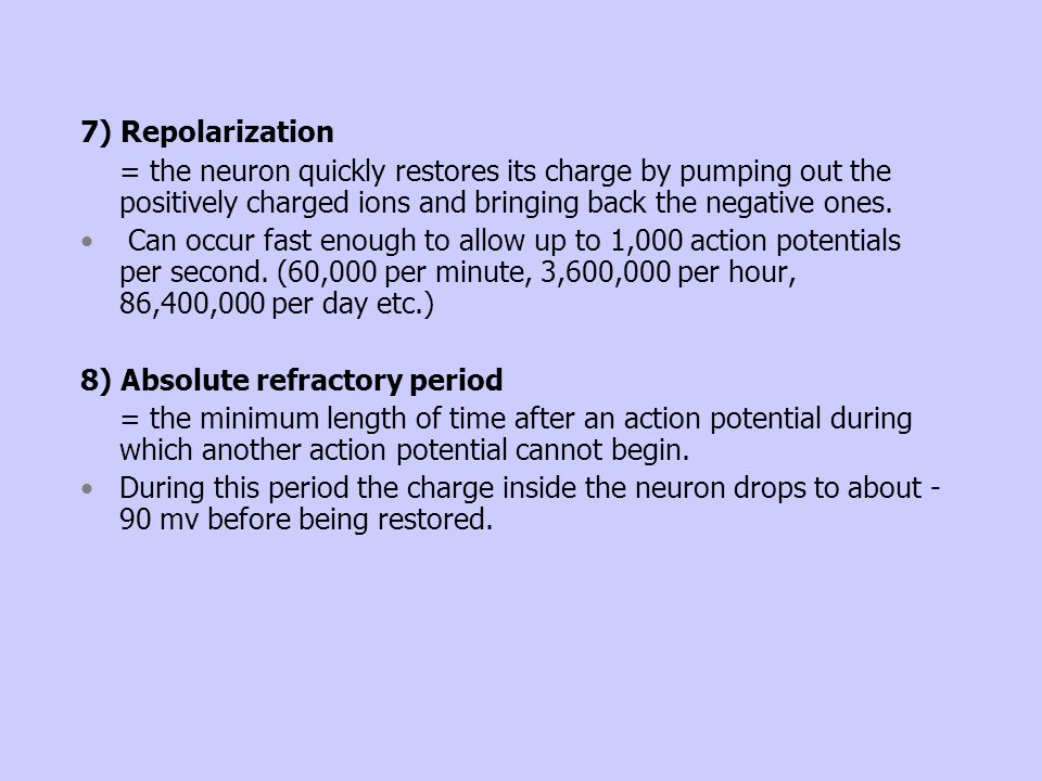 7) Repolarization = the neuron quickly restores its charge by pumping out the positively charged ions and bringing back the negative ones.