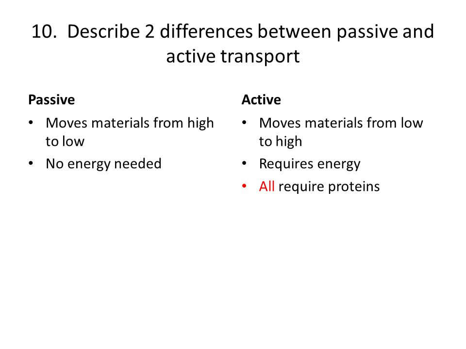 10. Describe 2 differences between passive and active transport