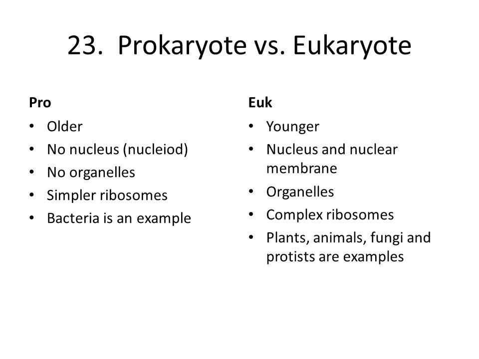23. Prokaryote vs. Eukaryote