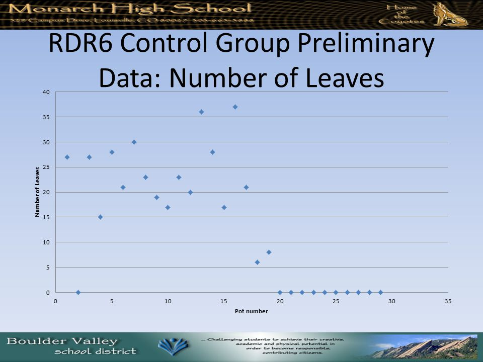 RDR6 Control Group Preliminary Data: Number of Leaves
