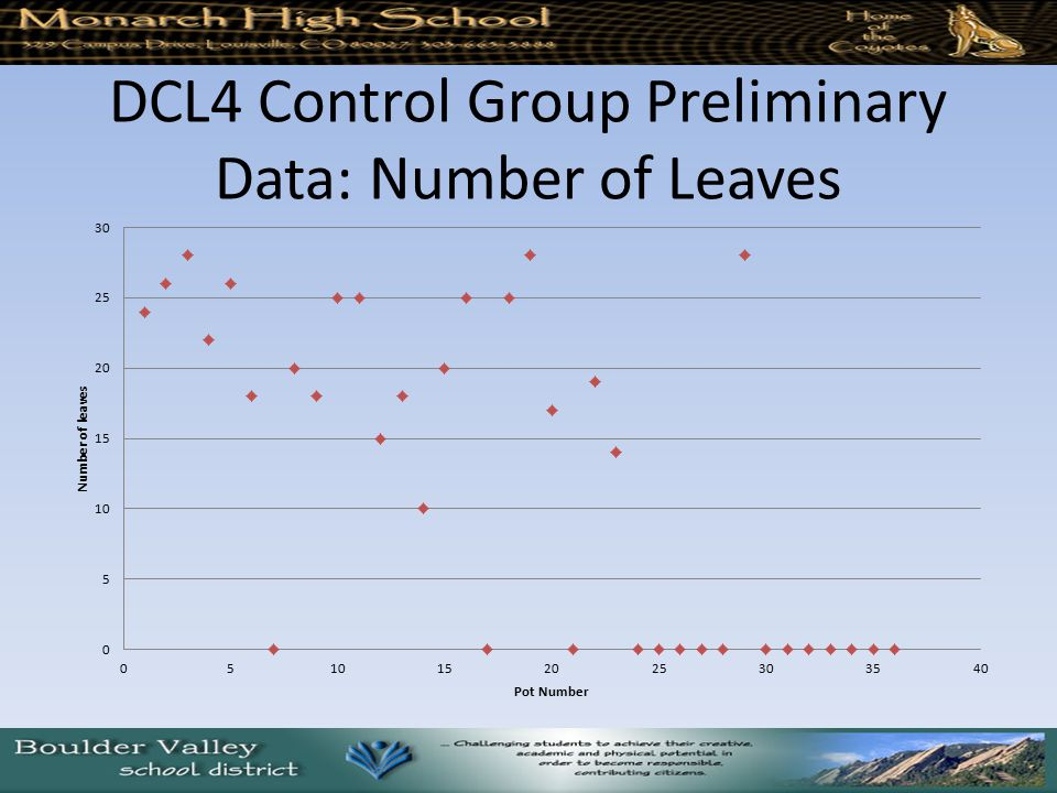 DCL4 Control Group Preliminary Data: Number of Leaves