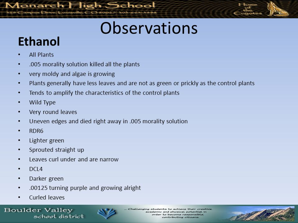 Observations Ethanol All Plants