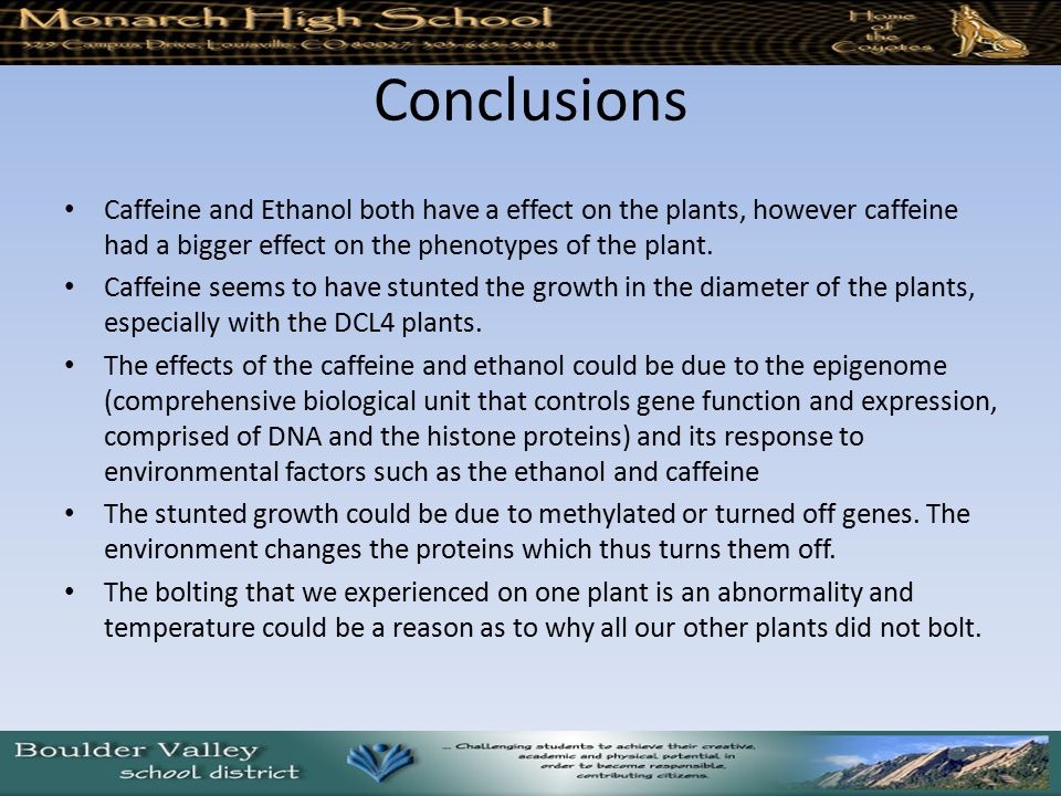 Conclusions Caffeine and Ethanol both have a effect on the plants, however caffeine had a bigger effect on the phenotypes of the plant.