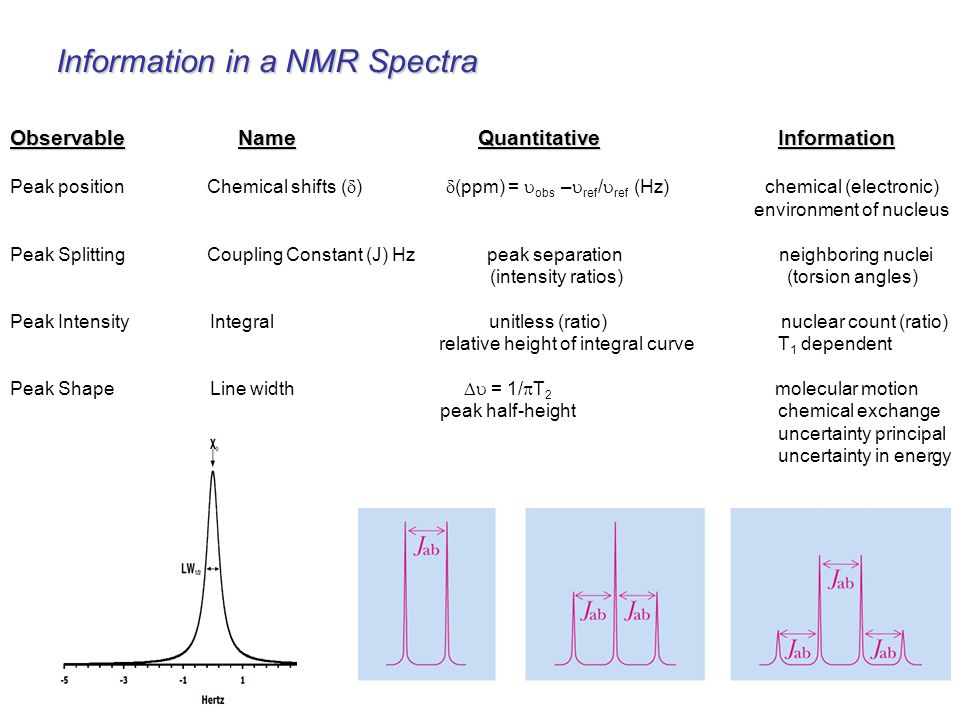Information in a NMR Spectra
