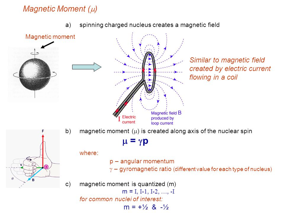 where: Magnetic Moment (m)