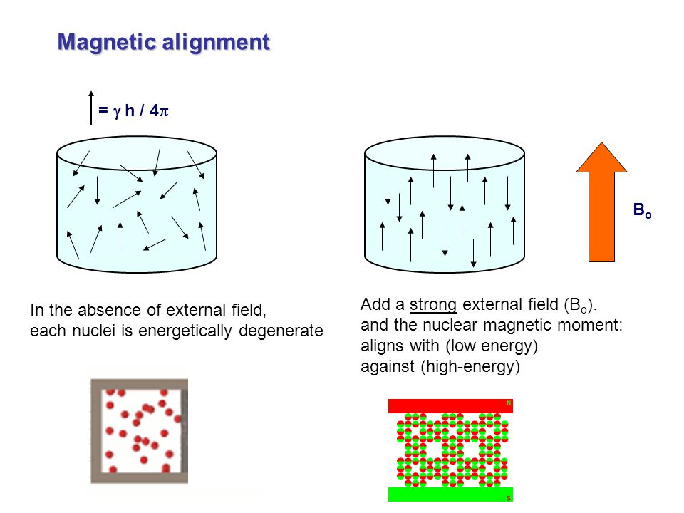 Magnetic alignment = g h / 4p Bo Add a strong external field (Bo).