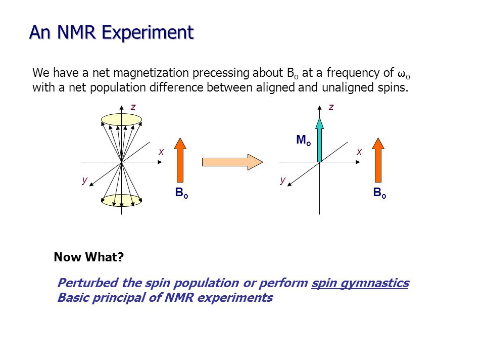 An NMR Experiment