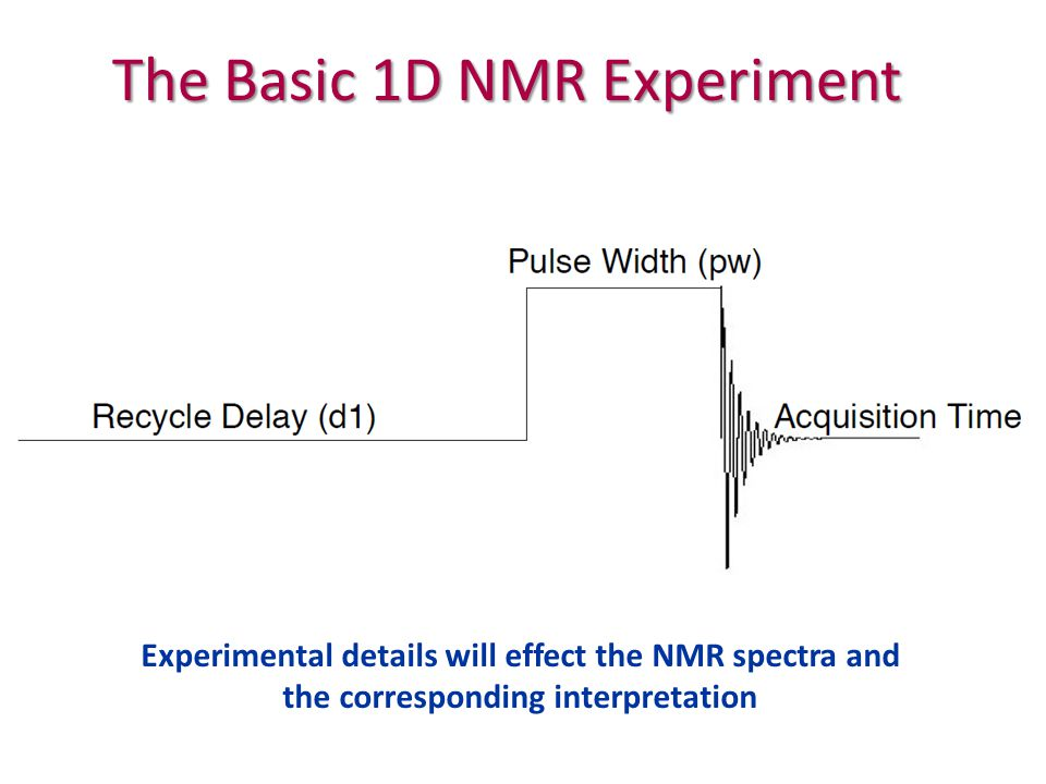 The Basic 1D NMR Experiment