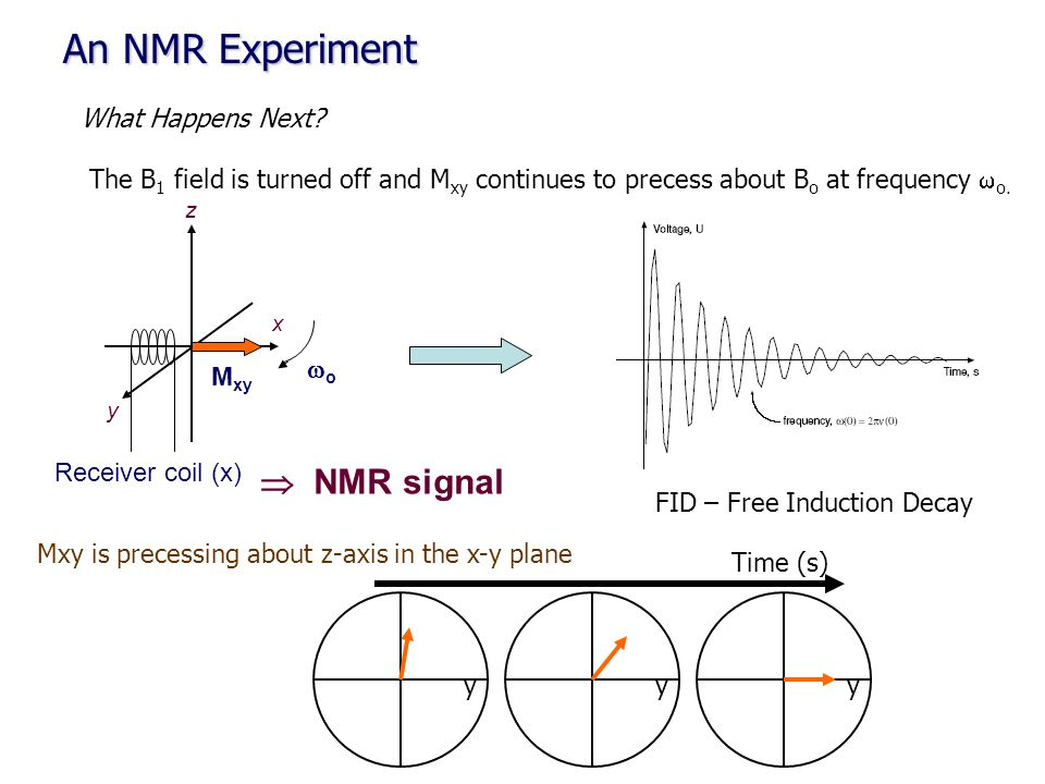 An NMR Experiment  NMR signal What Happens Next
