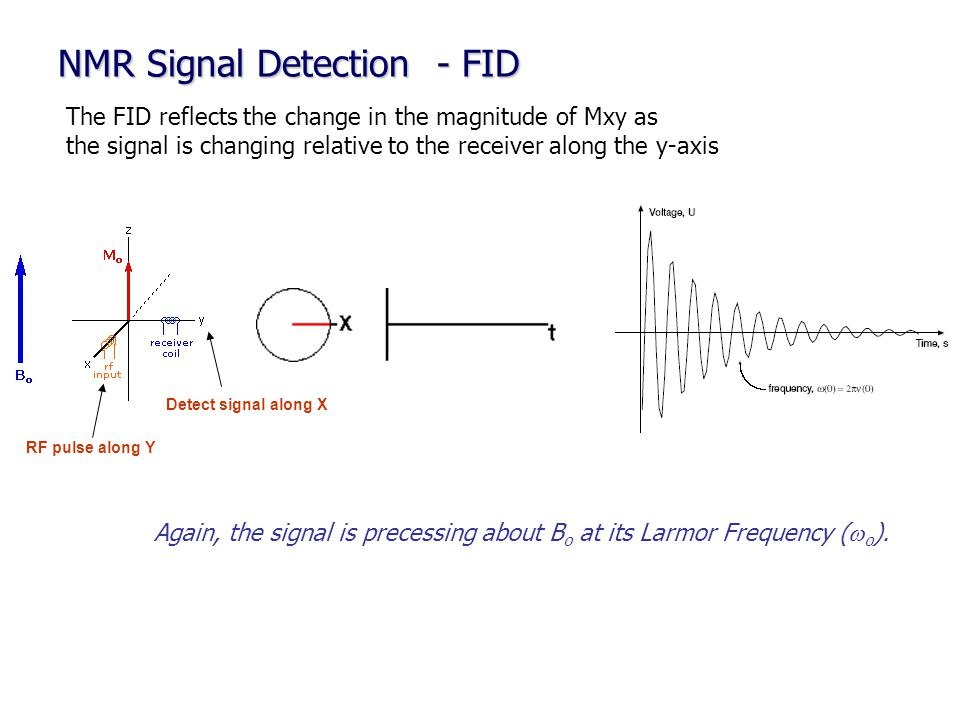 NMR Signal Detection - FID