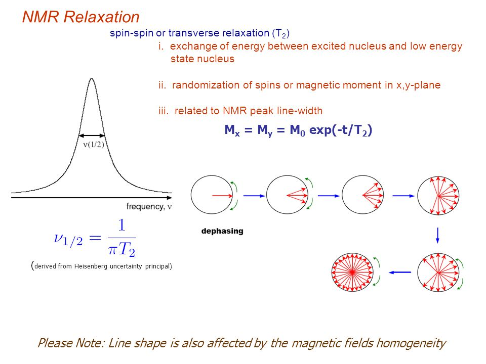 NMR Relaxation Mx = My = M0 exp(-t/T2)