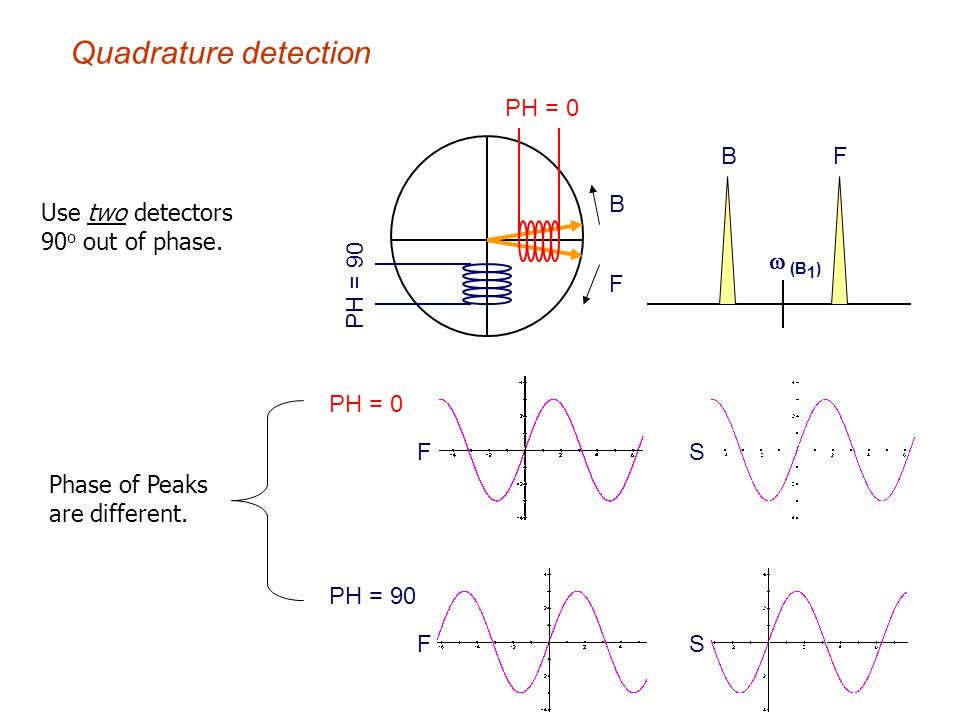 Quadrature detection PH = 0 B Use two detectors 90o out of phase.