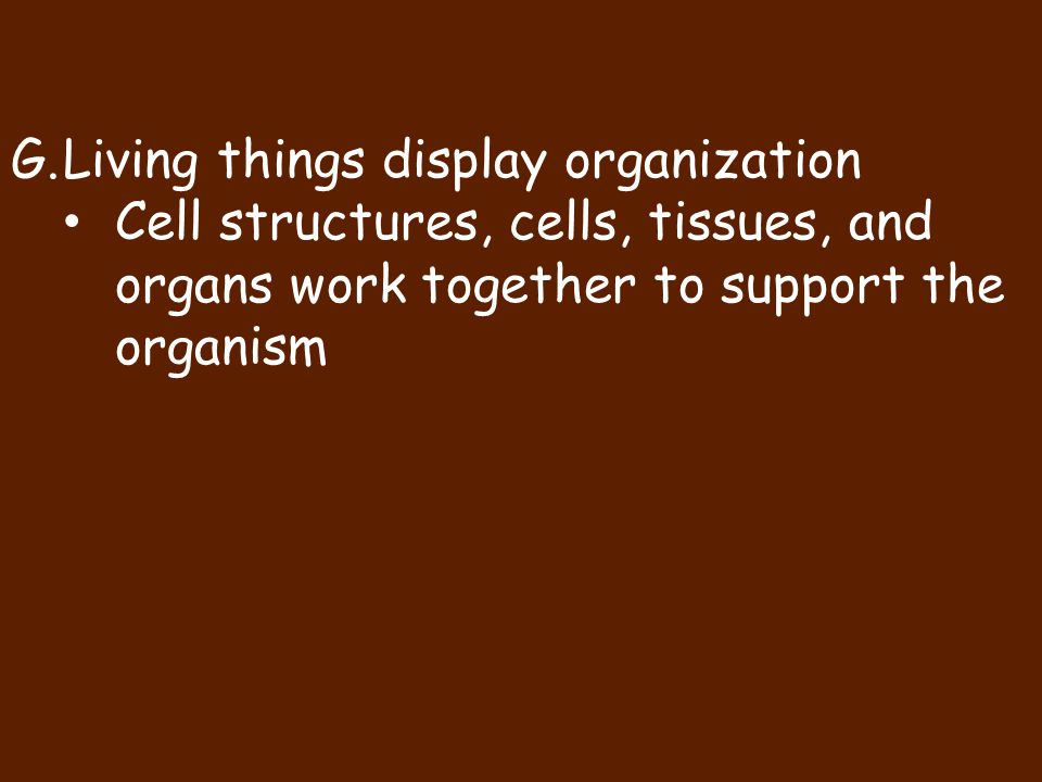 Living things display organization