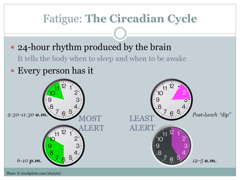 Fatigue: The Circadian Cycle