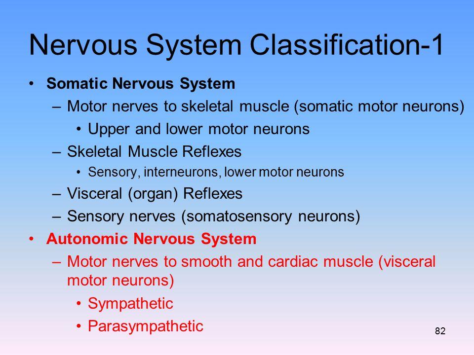 Nervous System Classification-1