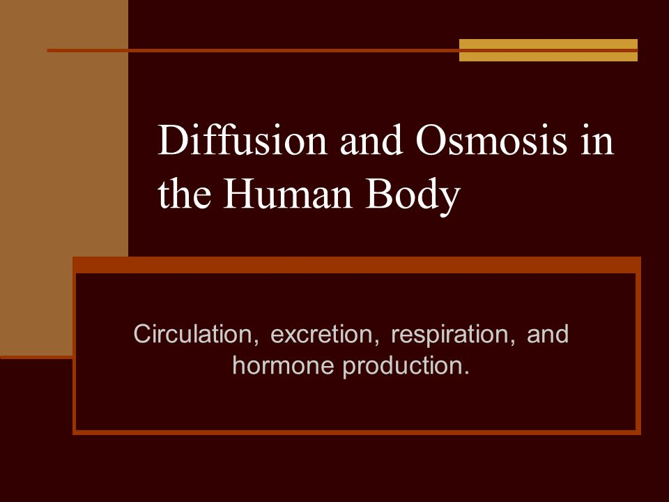 Diffusion and Osmosis in the Human Body