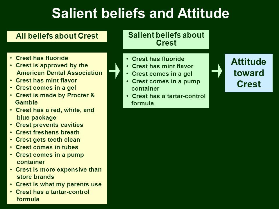Salient beliefs and Attitude