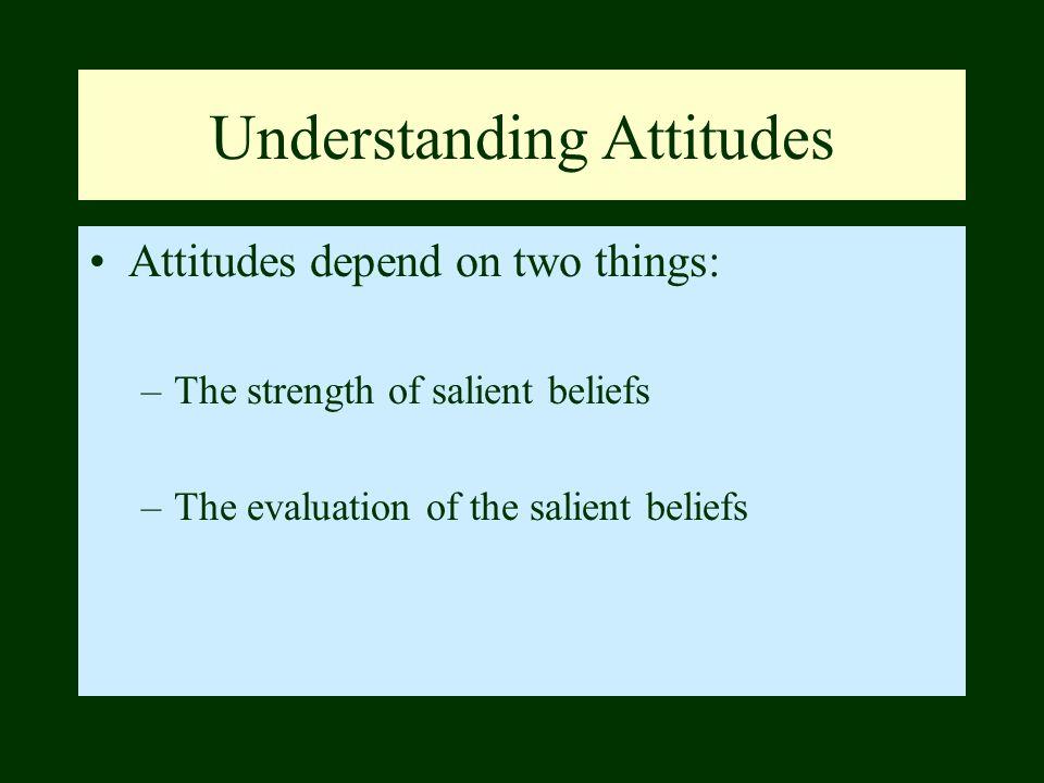 Understanding Attitudes