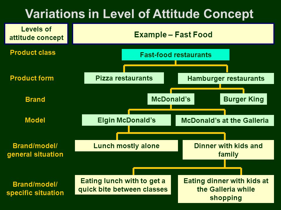 Variations in Level of Attitude Concept