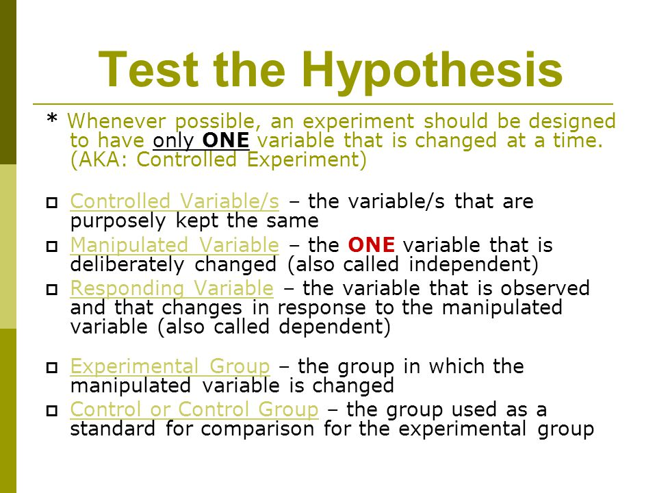 Test the Hypothesis