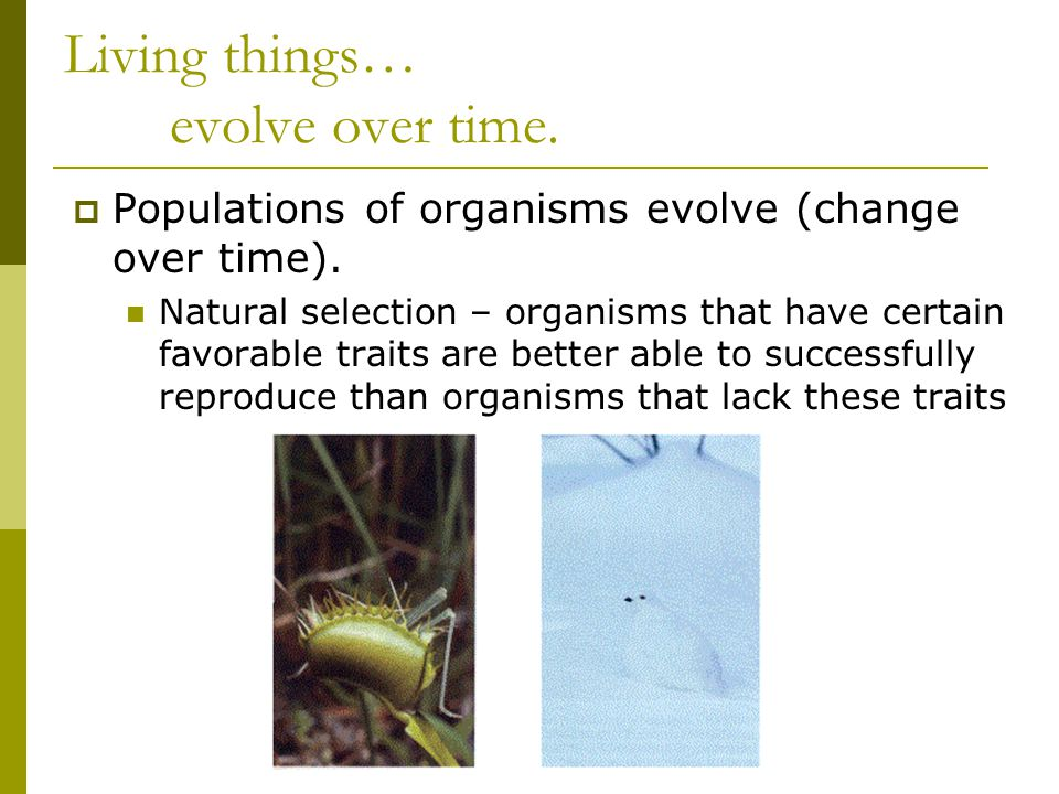 Living things… evolve over time.