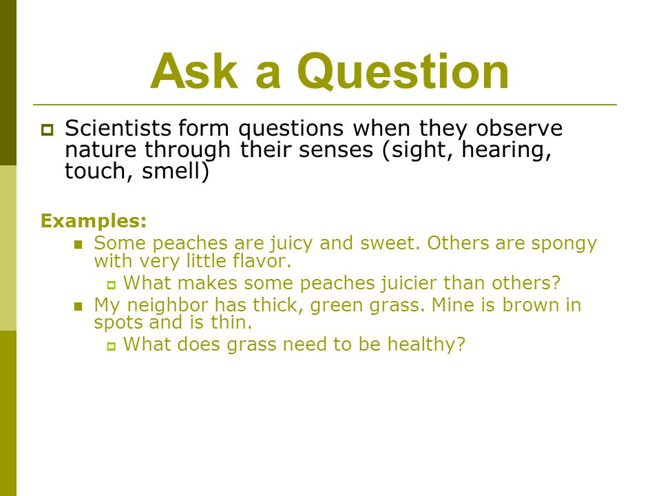 Ask a Question Scientists form questions when they observe nature through their senses (sight, hearing, touch, smell)