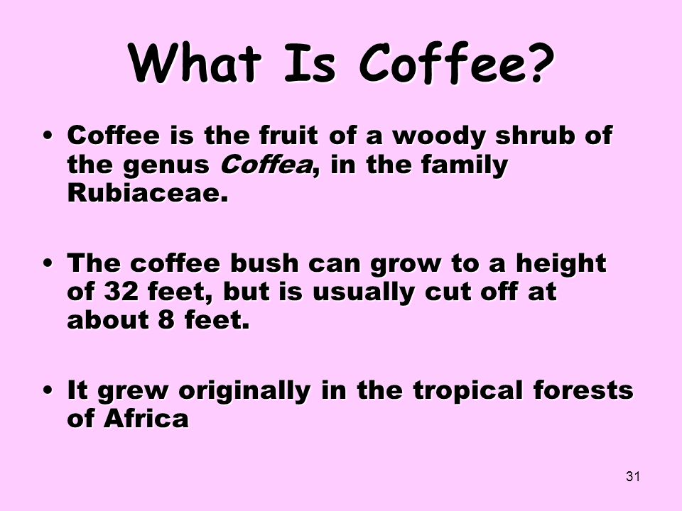 What Is Coffee Coffee is the fruit of a woody shrub of the genus Coffea, in the family Rubiaceae.