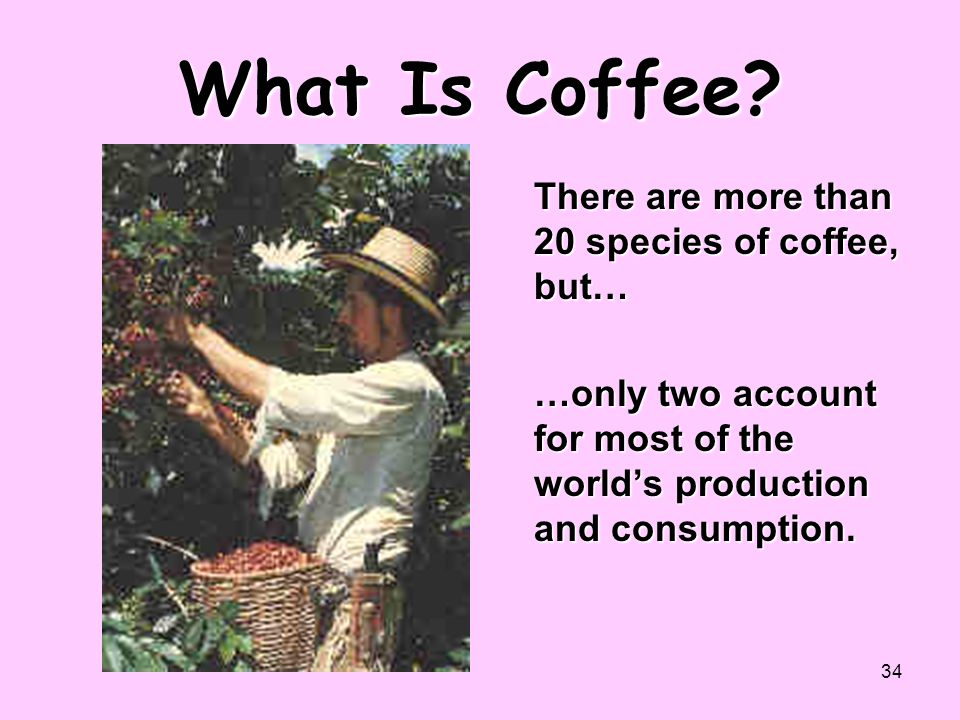 What Is Coffee There are more than 20 species of coffee, but…