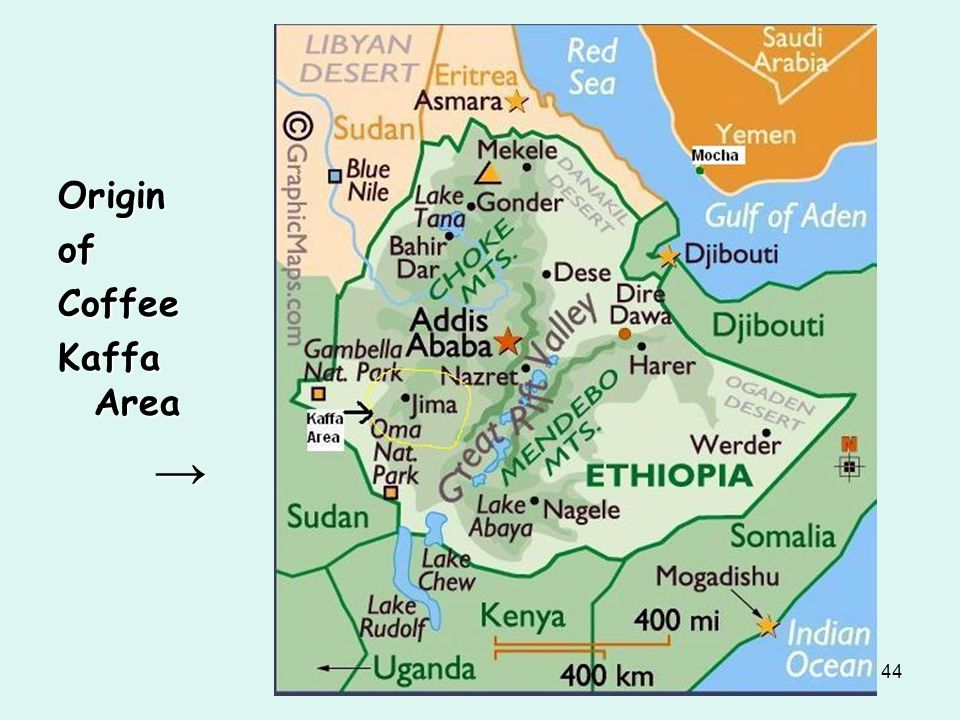 Origin of Coffee Kaffa Area →
